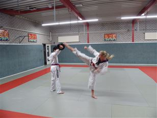 Workshop taekwondo