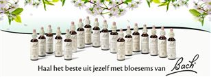 Bach Bloesem Remedies en Haptonomische massage